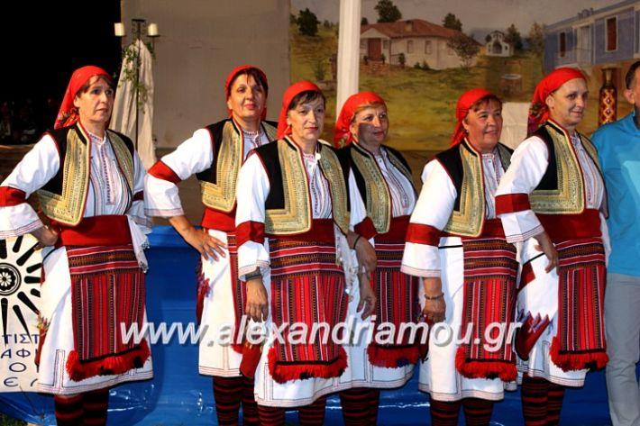 alexandriamou.gr_kipselideuterimera2019IMG_0266
