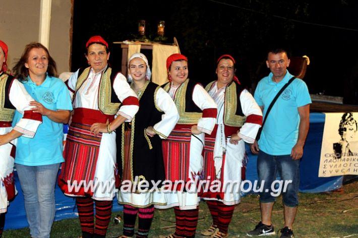 alexandriamou.gr_kipselideuterimera2019IMG_0268