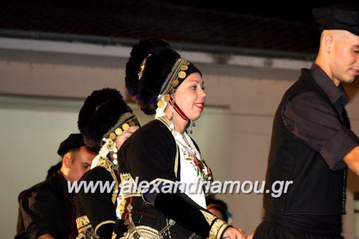 alexandriamou.gr_kipselideuterimera2019IMG_0320