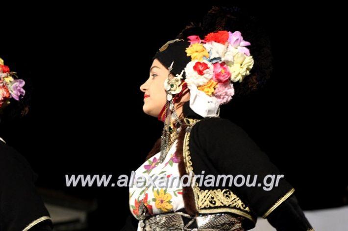 alexandriamou.gr_kipselideuterimera2019IMG_0333