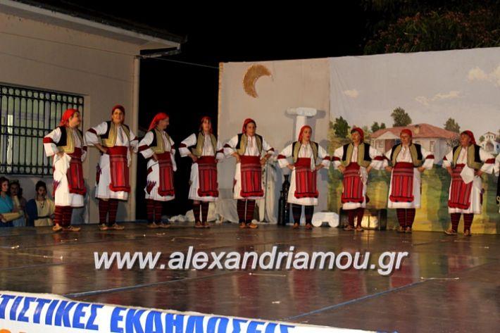 alexandriamou.gr_kipselideuterimera2019IMG_0408