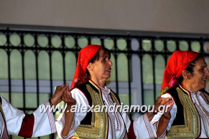 alexandriamou.gr_kipselideuterimera2019IMG_0418
