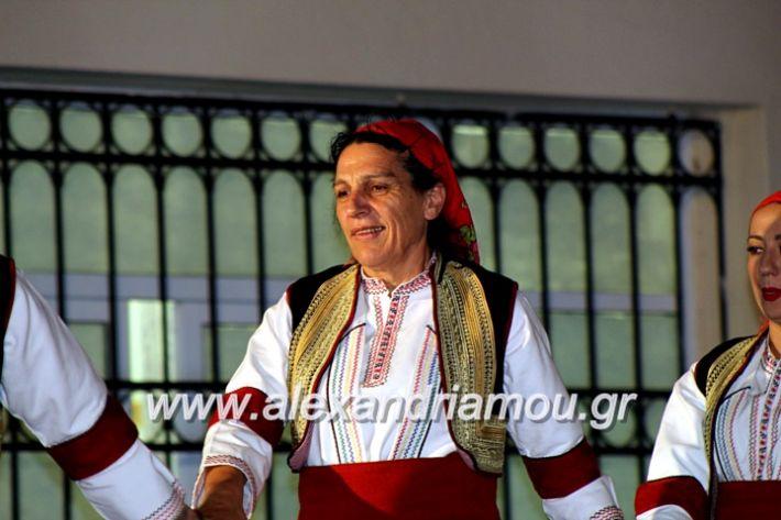alexandriamou.gr_kipselideuterimera2019IMG_0419