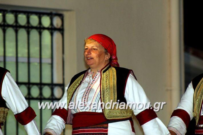 alexandriamou.gr_kipselideuterimera2019IMG_0420