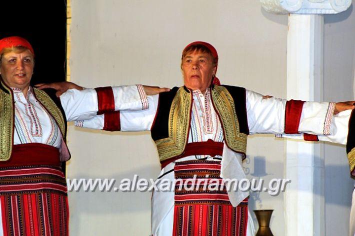 alexandriamou.gr_kipselideuterimera2019IMG_0421