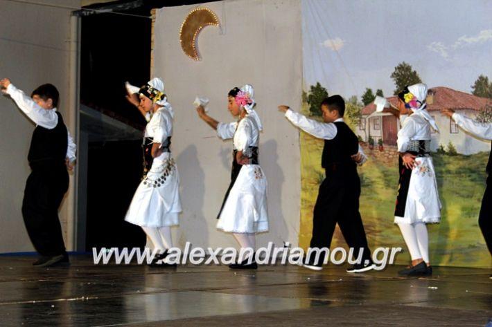alexandriamou.gr_xoreytikapaidikakipseli2019IMG_0039