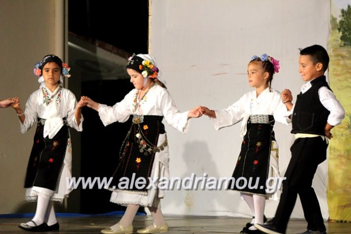 alexandriamou.gr_xoreytikapaidikakipseli2019IMG_0057
