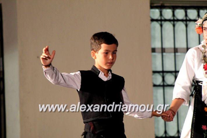 alexandriamou.gr_xoreytikapaidikakipseli2019IMG_0065