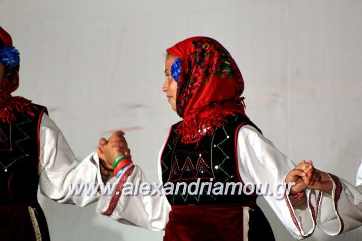 alexandriamou.gr_xoreytikapaidikakipseli2019IMG_0123