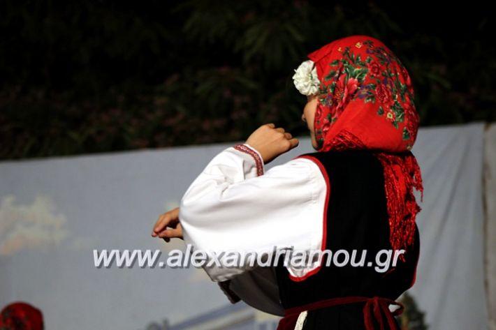 alexandriamou.gr_xoreytikapaidikakipseli2019IMG_0140