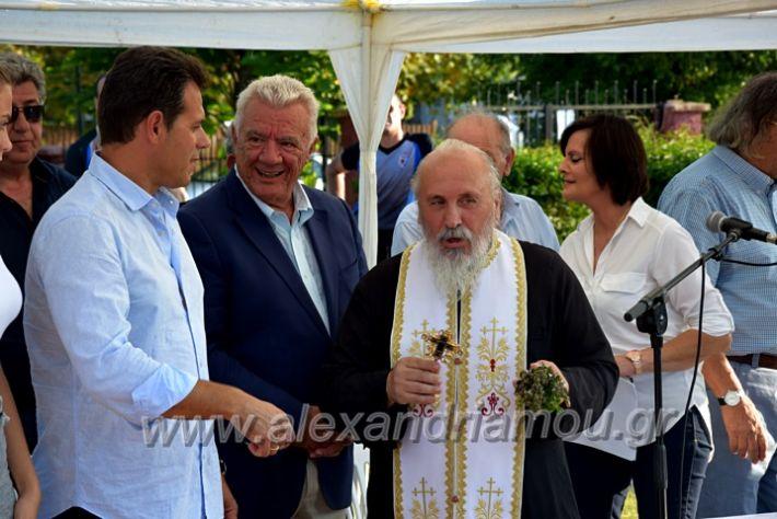 alexandriamou.gr_itoudisDSC_0399