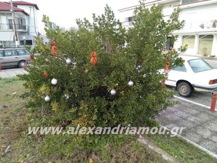 alexandriamou.gr_kleidisxoleiostolismos2019004