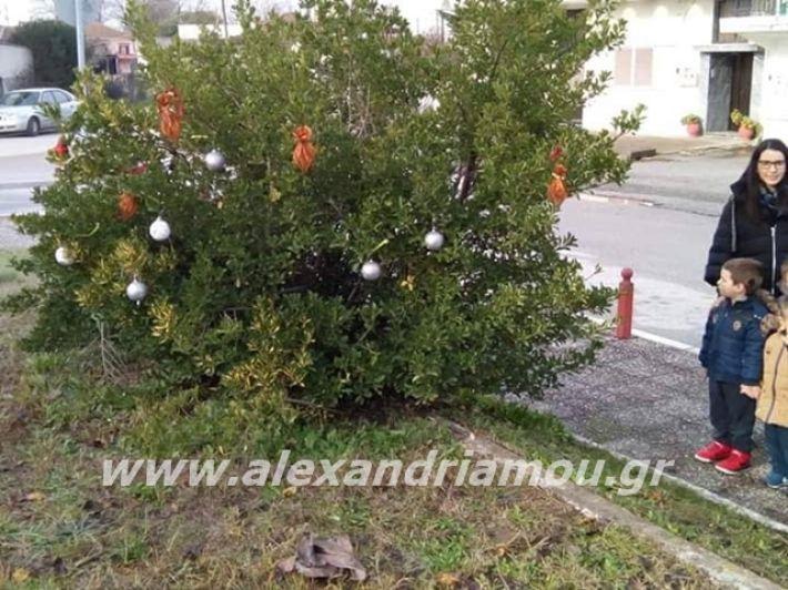 alexandriamou.gr_kleidisxoleiostolismos2019009