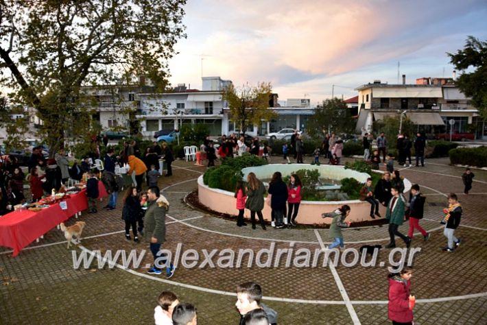 alexandriamou.gr_klididentro19DSC_0689
