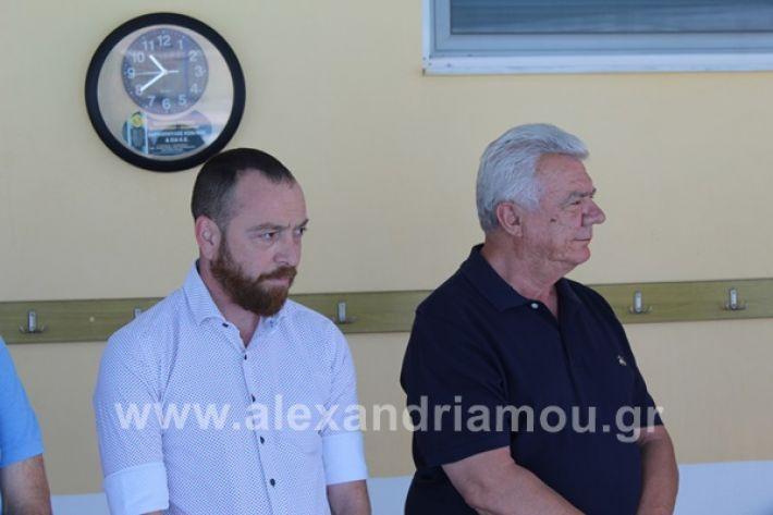 www.alexandriamou.gr_kolimvitirio28IMG_0683