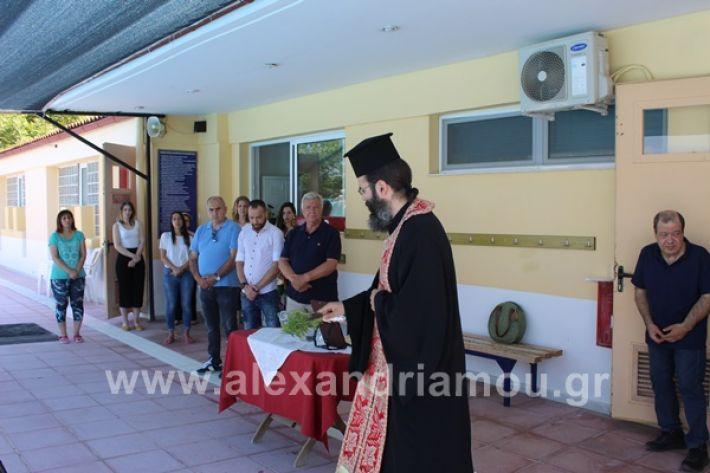 www.alexandriamou.gr_kolimvitirio28IMG_0707