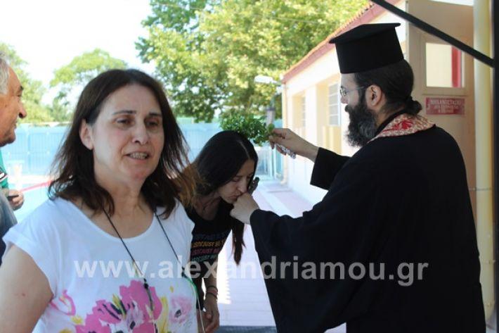 www.alexandriamou.gr_kolimvitirio28IMG_0719