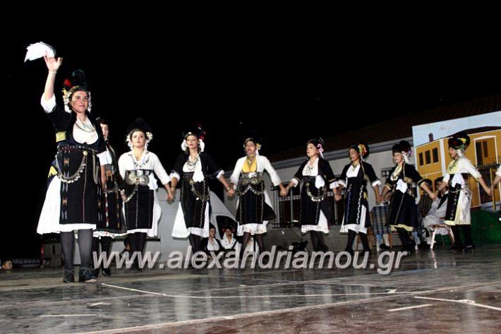 alexandriamou_korifiotikipita8.6.2019079