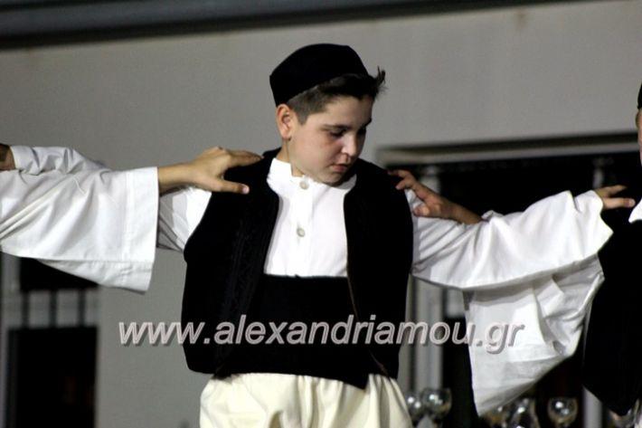alexandriamou_korifiotikipita8.6.2019136