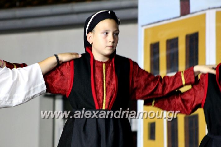 alexandriamou_korifiotikipita8.6.2019139