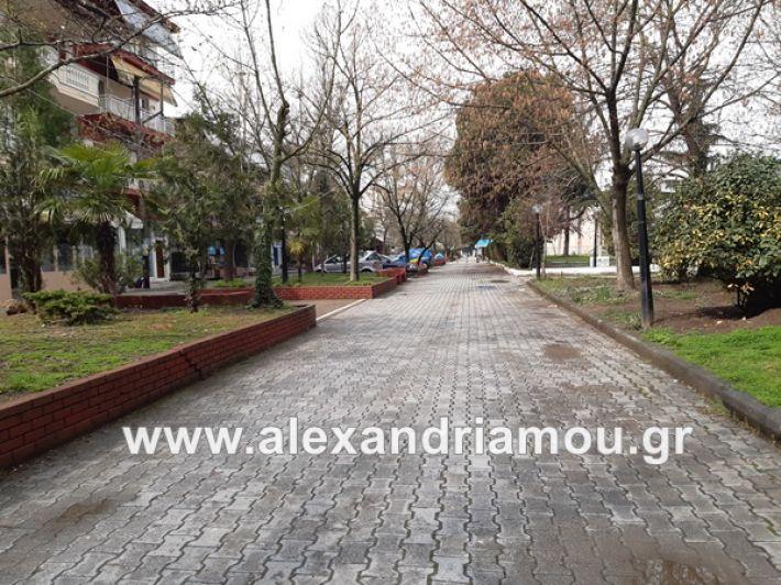 www.alexandriamou.gr_koronoios29.03.2020200329_111009