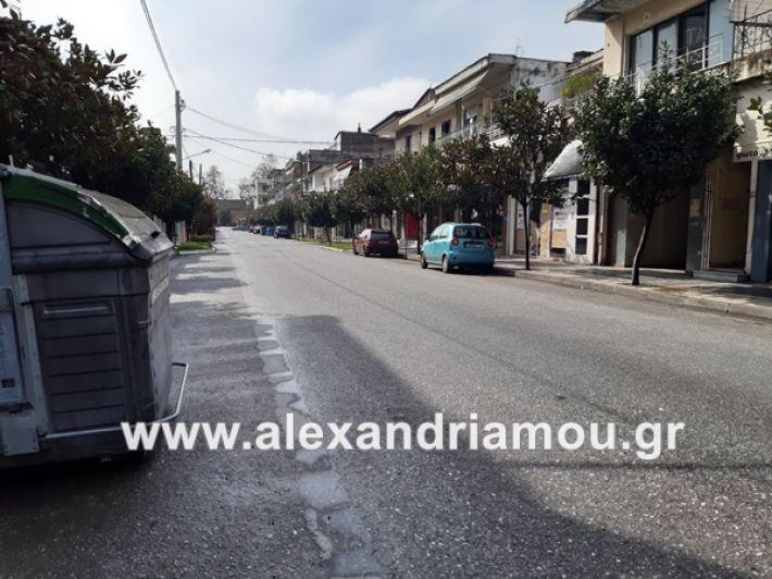 www.alexandriamou.gr_koronoios29.03.2020200329_112441