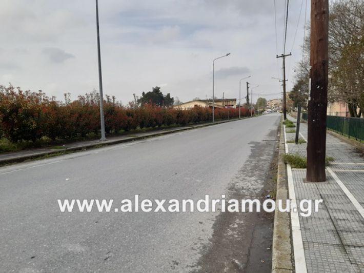 www.alexandriamou.gr_koronoios29.03.2020200329_120222
