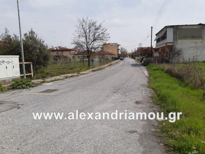 www.alexandriamou.gr_koronoios29.03.2020200329_120818