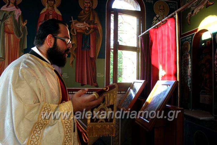 alexandriamou.gr_koukouzelis2019IMG_8807