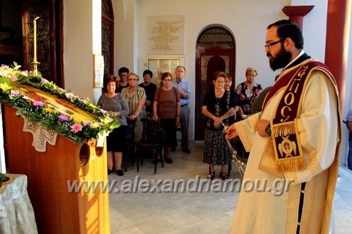 alexandriamou.gr_koukouzelis2019IMG_8828