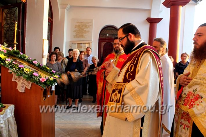 alexandriamou.gr_koukouzelis2019IMG_8842