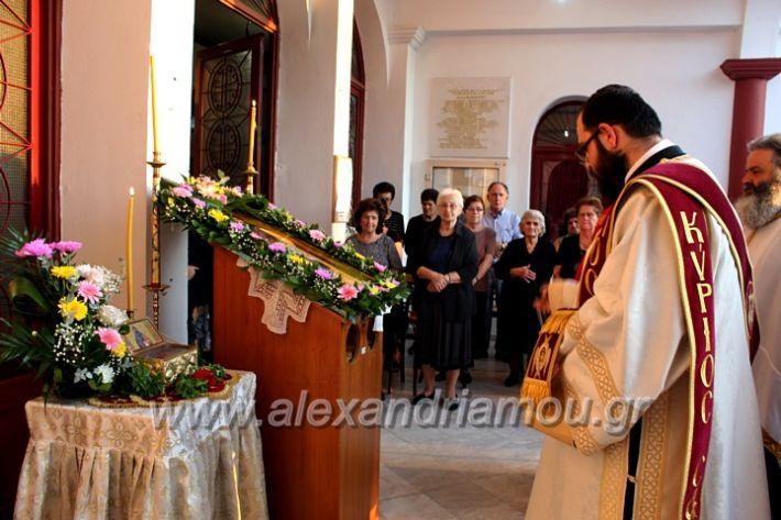 alexandriamou.gr_koukouzelis2019IMG_8849