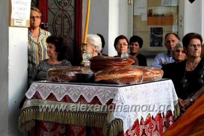 alexandriamou.gr_koukouzelis2019IMG_8871