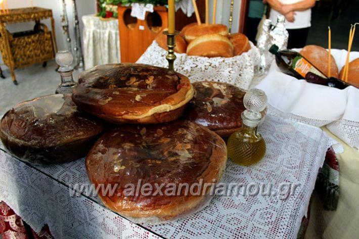 alexandriamou.gr_koukouzelis2019IMG_8873