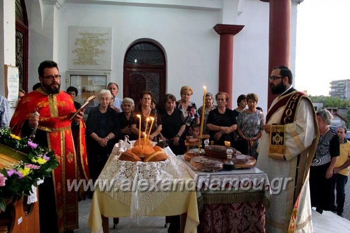 alexandriamou.gr_koukouzelis2019IMG_8889