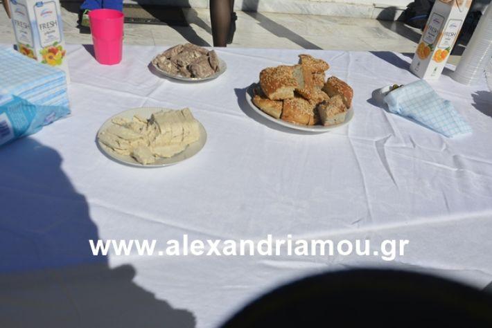 alexandriamou.gr_kouloumapanagia002