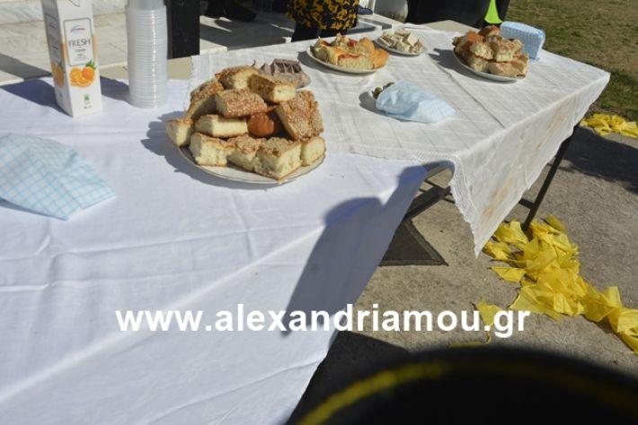 alexandriamou.gr_kouloumapanagia003