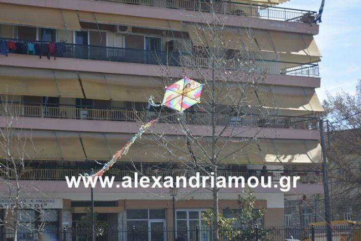 alexandriamou.gr_kouloumapanagia011