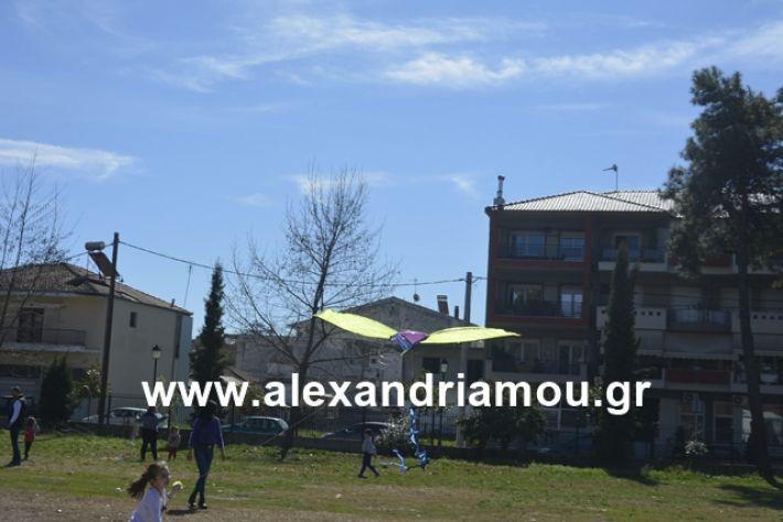 alexandriamou.gr_kouloumapanagia021