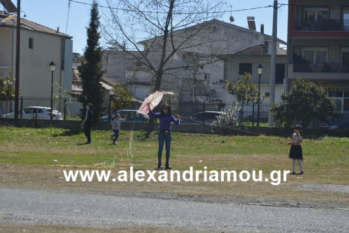 alexandriamou.gr_kouloumapanagia031