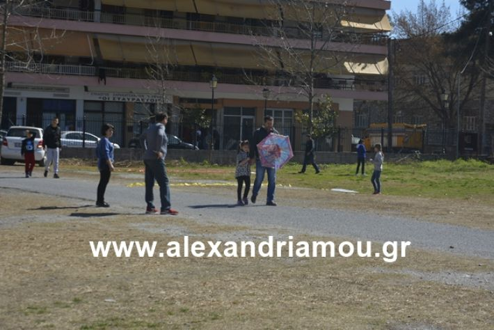 alexandriamou.gr_kouloumapanagia033