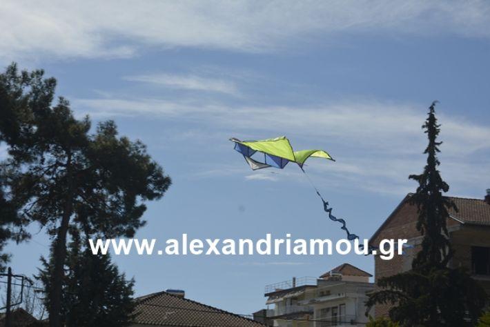 alexandriamou.gr_kouloumapanagia040