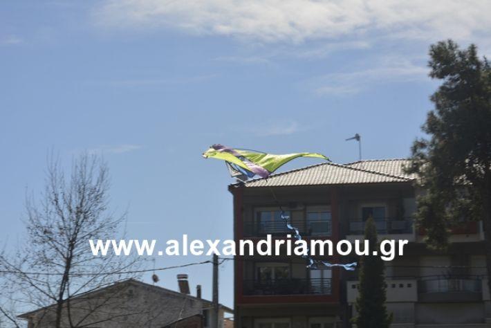alexandriamou.gr_kouloumapanagia041