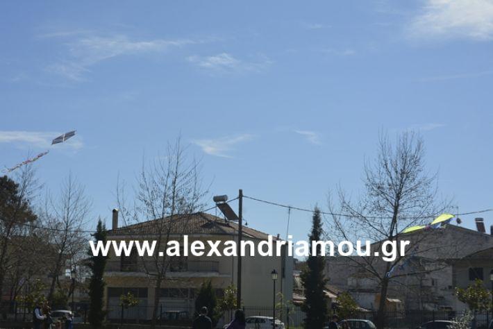 alexandriamou.gr_kouloumapanagia042