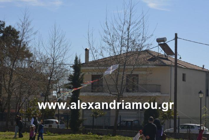 alexandriamou.gr_kouloumapanagia044