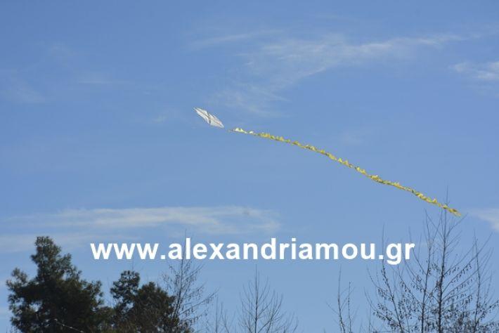 alexandriamou.gr_kouloumapanagia050