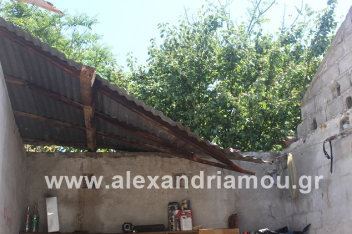 alexandriamou.gr_lamarines11.7.19007