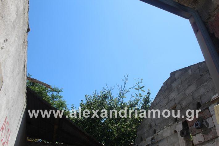 alexandriamou.gr_lamarines11.7.19008