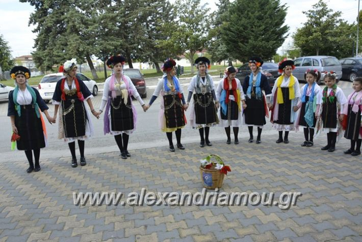 alexandriamou_lazarines1232