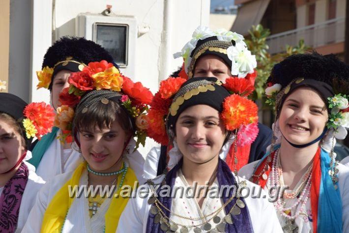 alexandriamou_lazarines70